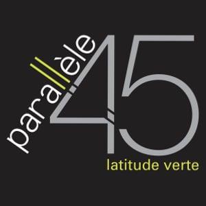 logo_P45Vente